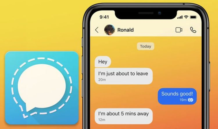 Signal update for Android, iOS highlights animated stickers, chat wallpapers