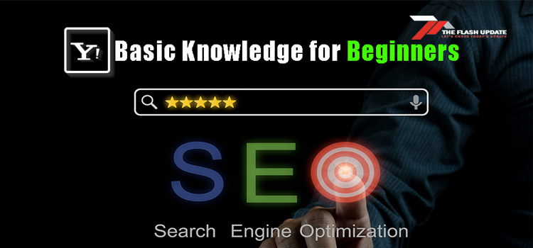 Search Engine Optimization Basics knowledge for Beginners